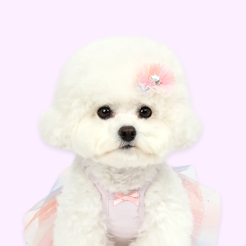 itsdog-[발레리나 튜튜 헤어핀]♡寵物配件