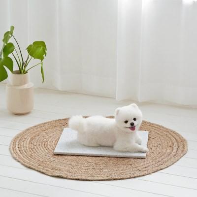 1-텐바이텐 10X10 : 강아지 대리석 쿨매트♡寵物屋