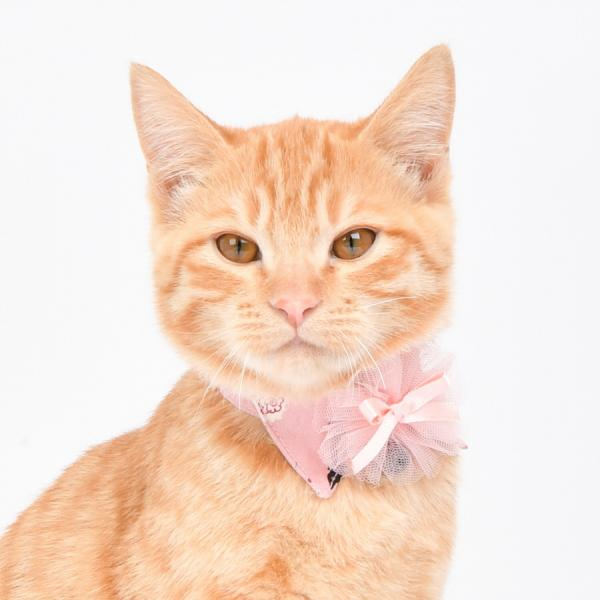 jeramypet-CATSPIA 고양이 넥스카프 몽글 스카프 (CAUA-SC9492)♡寵物衫