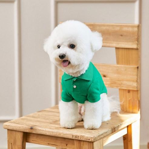 베니즈 클래식 카라 강아지 티셔츠그린