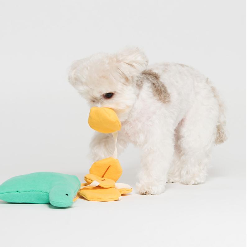 jeramypet-스니프 줄줄이 황금알 강아지 노즈워크 토이♡寵物生活用品
