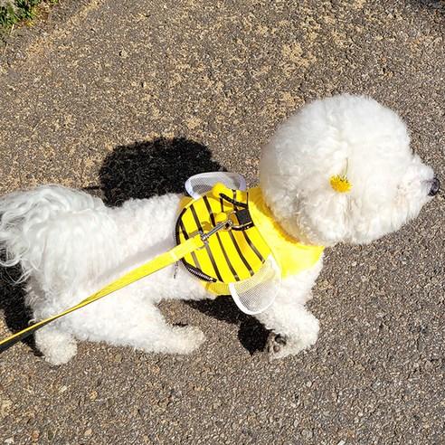 리스펫 댕댕 꿀벌 강아지 하네스S