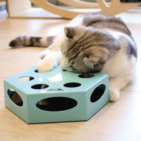 리스펫 사냥본능 고양이 자동 장난감