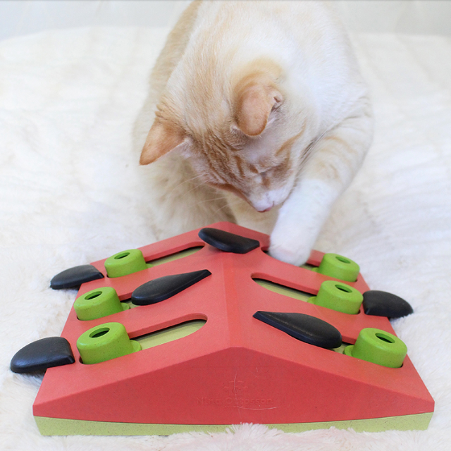 jeramypet-니나오토슨 고양이 지능개발 퍼즐장난감♡寵物生活用品
