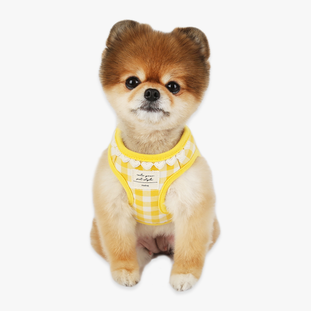 itsdog-[하트 체크 하네스 (옐로우) ]♡寵物散步帶用品