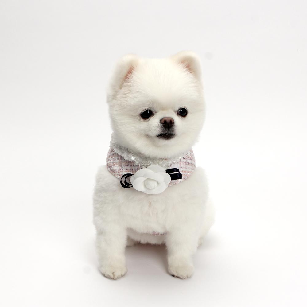 itsdog-[까멜리아 트위드 하네스 (핑크)]♡寵物散步帶用品