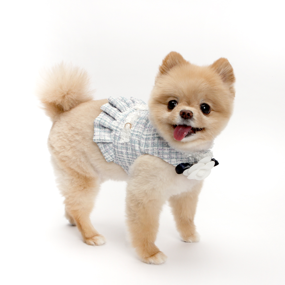 itsdog-[까멜리아 트위드 하네스 (블루)]♡寵物散步帶用品