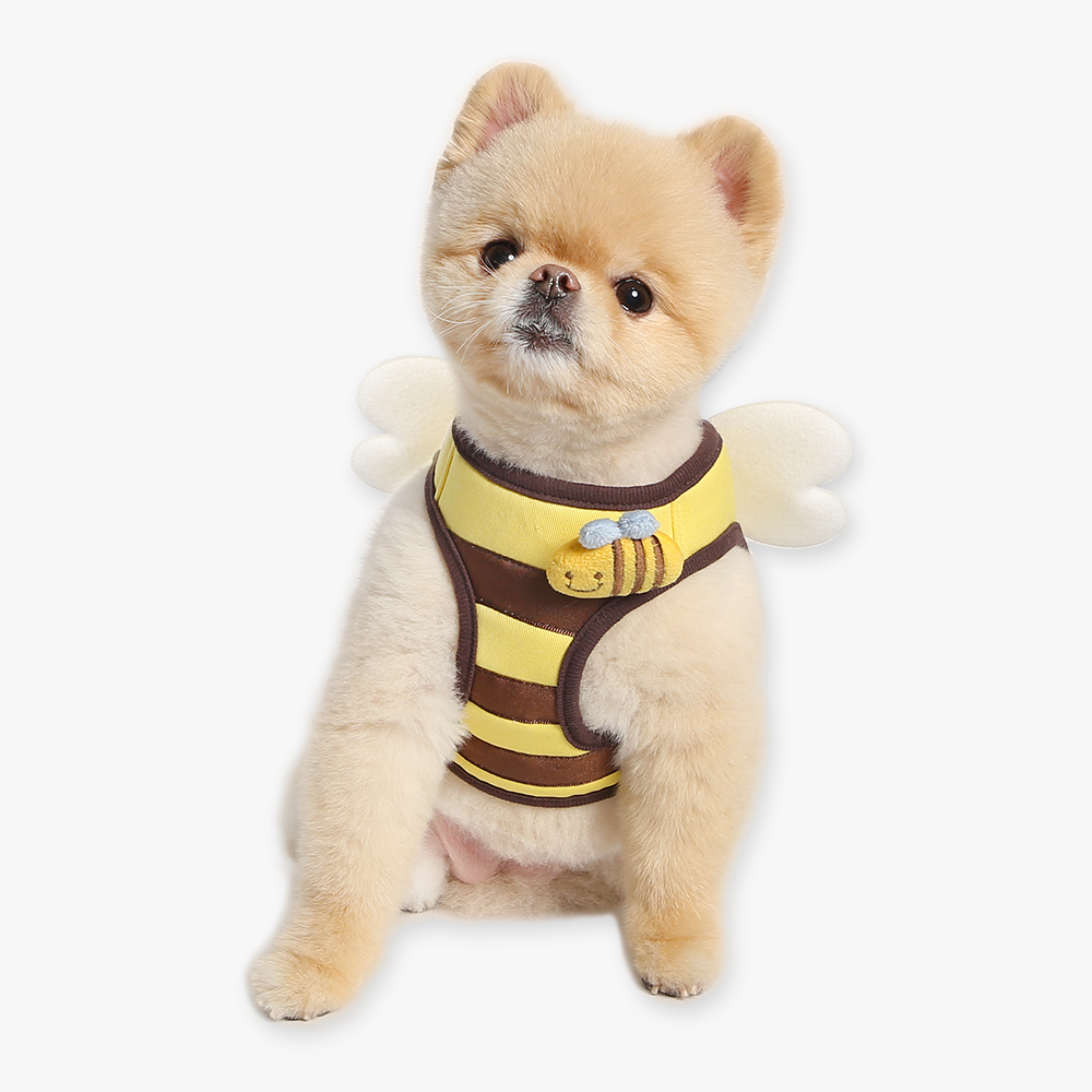 itsdog-[꿀벌 하네스]♡寵物散步帶用品